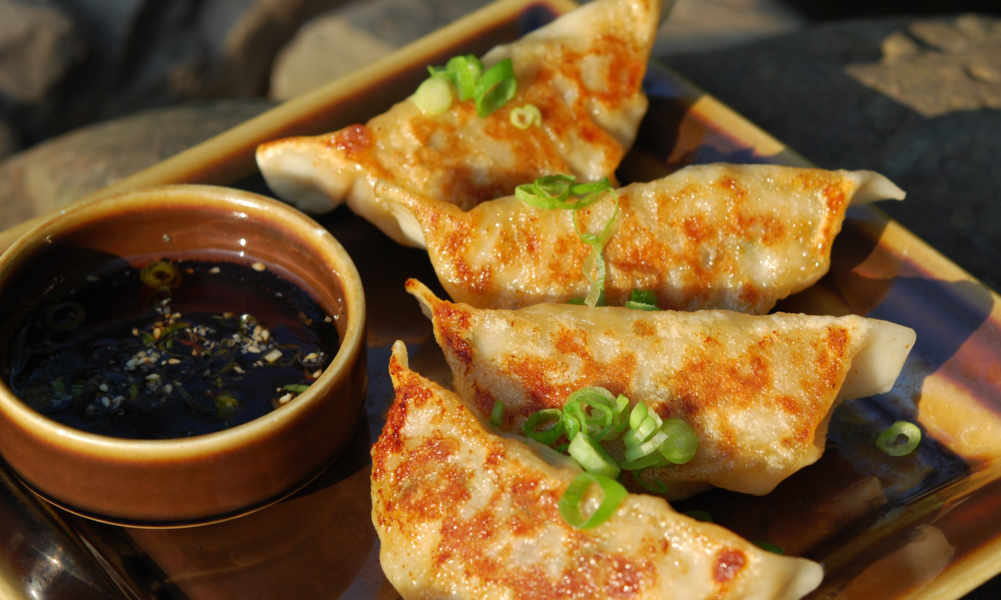 Fried gyoza dumplings.