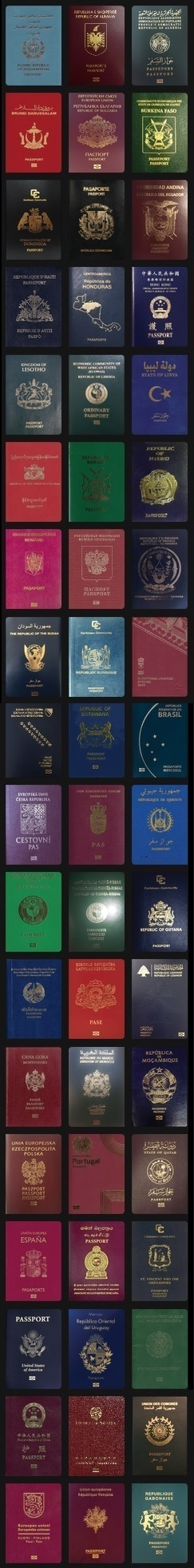 A set of passports of different countries.